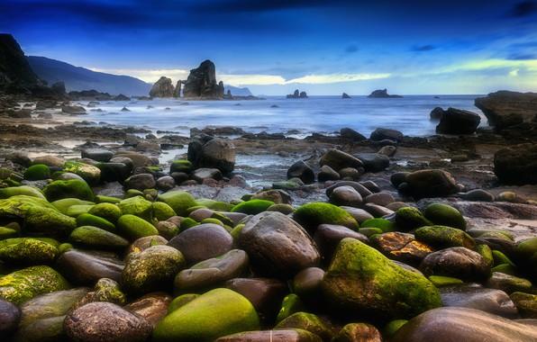 Picture sea, landscape, stones, moss, Nature