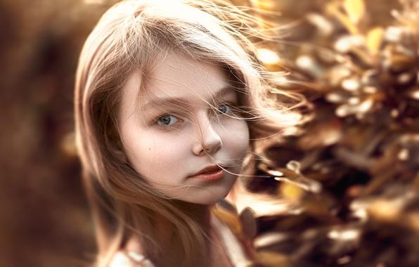 Picture hair, portrait, the beauty, curls, Stepan Gladkov, Stepan Gladkov