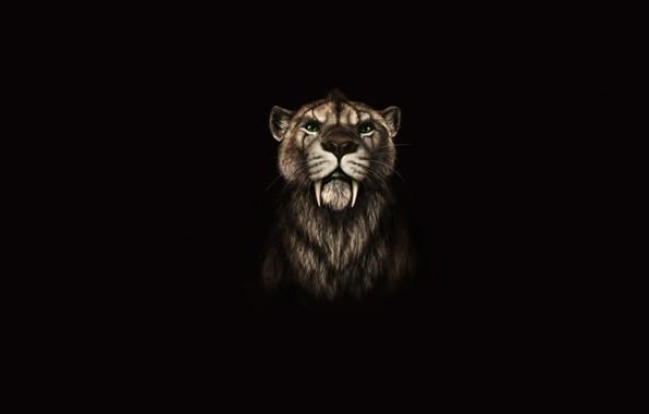 Picture cat, fangs, ancient