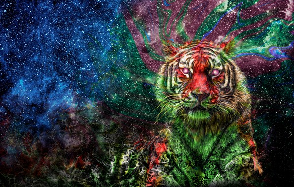 Picture space, tiger, colorful, color