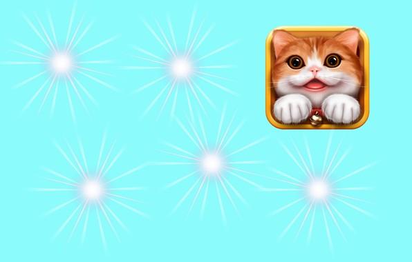 Picture lights, art, kitty, children's