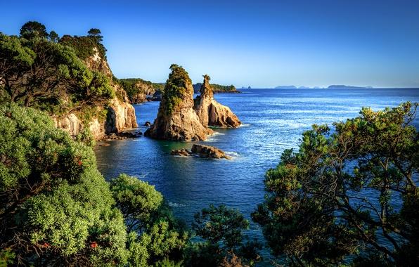 Picture sea, the sky, the sun, trees, stones, rocks, coast, New Zealand, horizon, Hahei