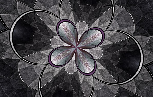 Picture flower, line, pattern, arc, fractal