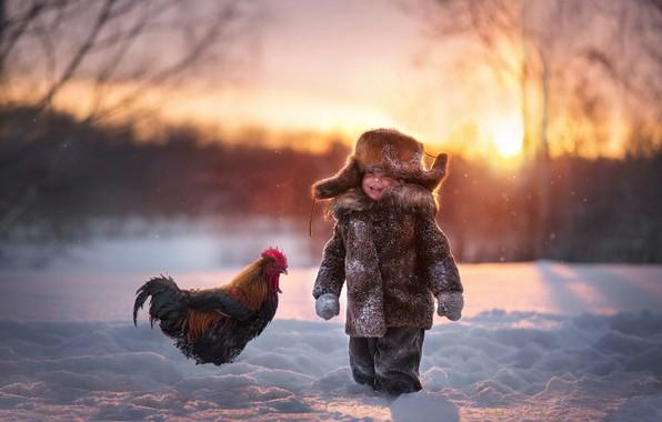 Picture winter, snow, joy, hat, boy, cock