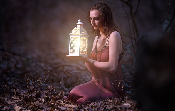 Picture forest, girl, mood, lantern