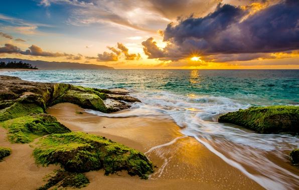 Picture sand, sea, the sky, the sun, clouds, algae, tropics, stones, dawn, coast, horizon, Hawaii