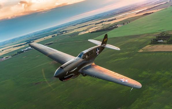 Picture flight, fighter, P-40, Warhawk