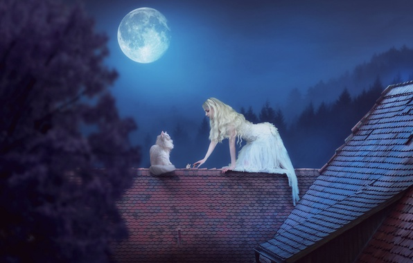 Picture girl, night, the moon, the situation, mouse, roof, on the roof, white cat