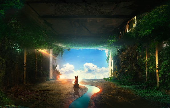 Picture the sky, water, dog, tunnel, by t1na