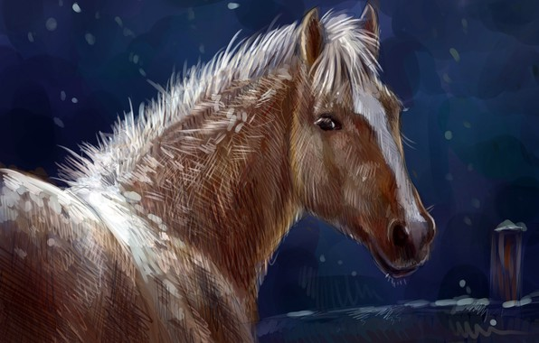 Picture winter, nature, horse, horse, oil, art, watercolor, pencil, painting, horse, gouache, wallpaper., painting painting, night …