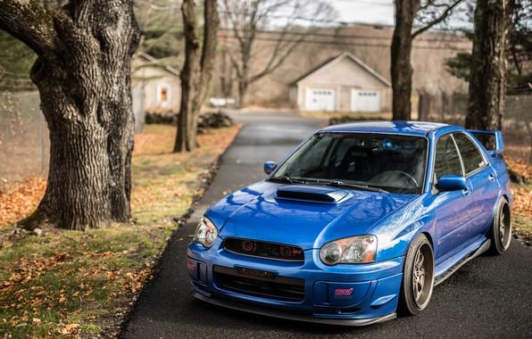 Picture Subaru, Impreza, WRX, Blue, STI