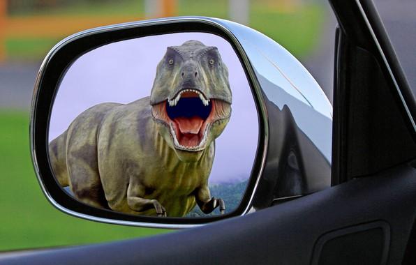Picture auto, dinosaur, predator, mouth, horror, T-Rex, Jurassic Park, in the mirror