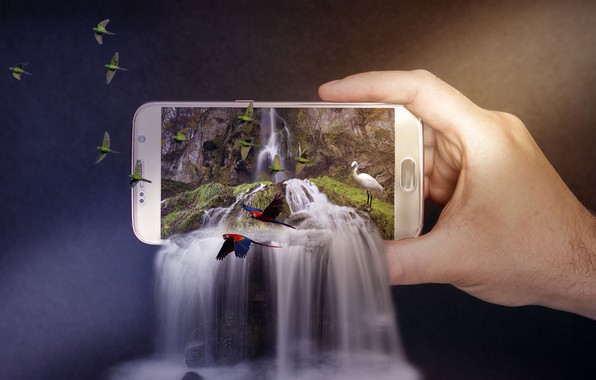 Picture birds, nature, background, photoshop, waterfall, hand, parrots, cascade, Heron, smartphone