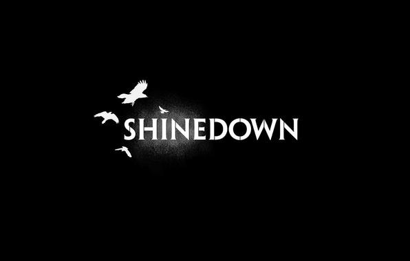 Photo Wallpaper Shinedown Rock Music Alternative