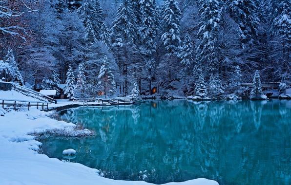 Picture winter, forest, lake, Switzerland, Switzerland, Bernese Oberland, Kandersteg Valley, the valley of the river Kander, …