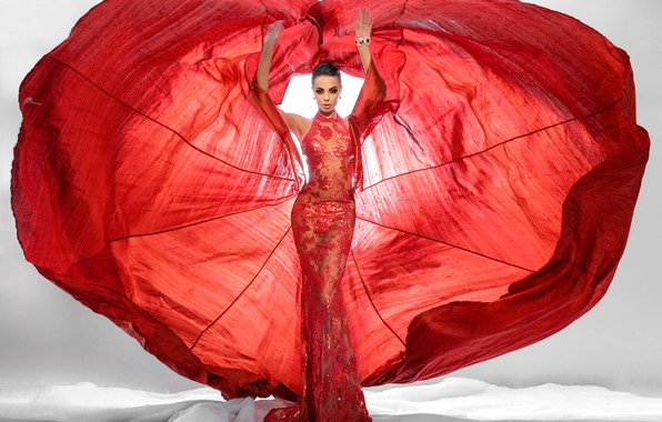 Picture red, fashion, dress, woman