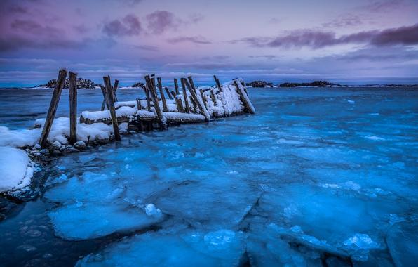 Picture winter, sea, shore, ice