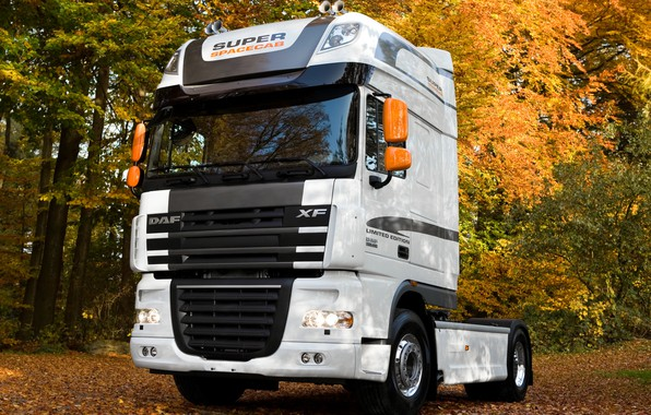 Picture autumn, trees, foliage, black and white, DAF, tractor, DAF, 4x2, DAF XF105.460, White Edition, Super …