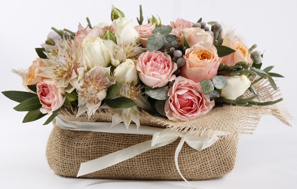 Picture roses, bow, composition, astrantia