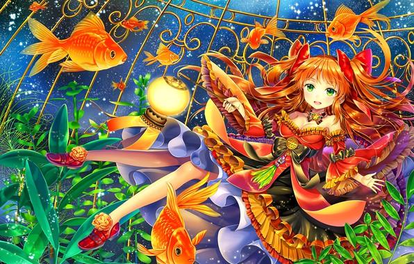 Photo wallpaper fish, dress, girl