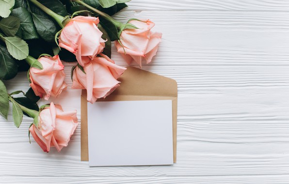Picture flowers, bouquet, Paper, Roses, The envelope
