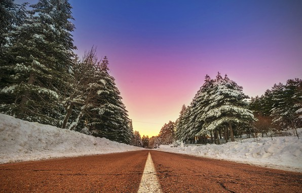 Picture winter, road, forest, the sky, forest, trees, winter, roads