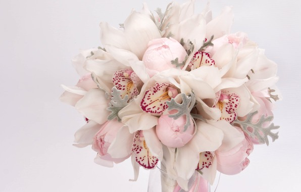 Picture macro, tenderness, bouquet, Orchid, peonies