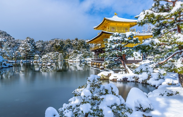 Picture winter, snow, trees, pond, Park, Japan, temple, Japan, Kyoto, Kyoto, Golden Pavilion, Golden pavilion, Kinkaku-ji, …