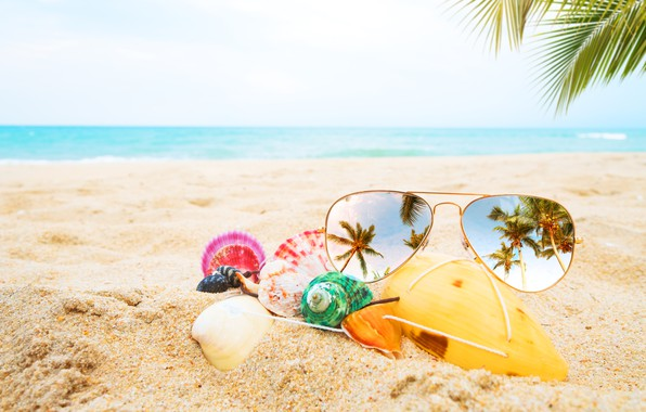 Photo wallpaper sand, sea, beach, summer, palm trees, stay, glasses, shell, summer, beach, vacation, sea, sand, paradise, ...