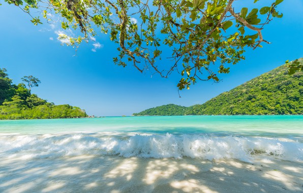 Picture Nature, Sea, Beach, Tropics, Stay, Blue water