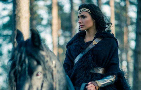 Picture cinema, Wonder Woman, woman, movie, brunette, horse, film, DC Comics, Gal Gadot