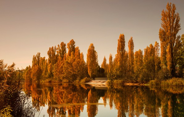 Picture autumn, forest, the sky, water, trees, reflection, river, yellow, Italy, Salionze