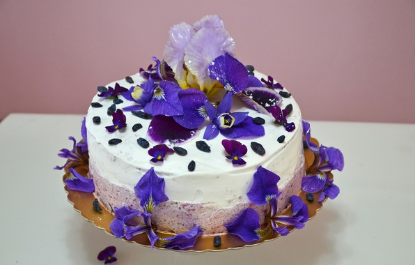 Picture flowers, food, cake, decoration, irises, cream, sweet, violet