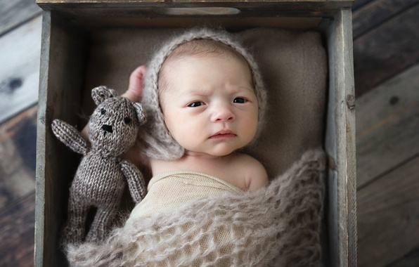 Picture bear, child, baby