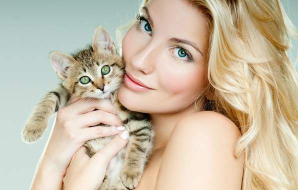 Picture look, girl, background, makeup, hairstyle, blonde, beautiful, kitty, keeps, in the hands