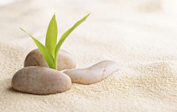 Picture sand, Rostock, Spa stones