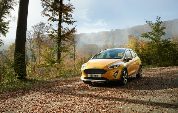 Picture Ford, Yellow, Car, Fiesta, Active, 2017, Worldwide