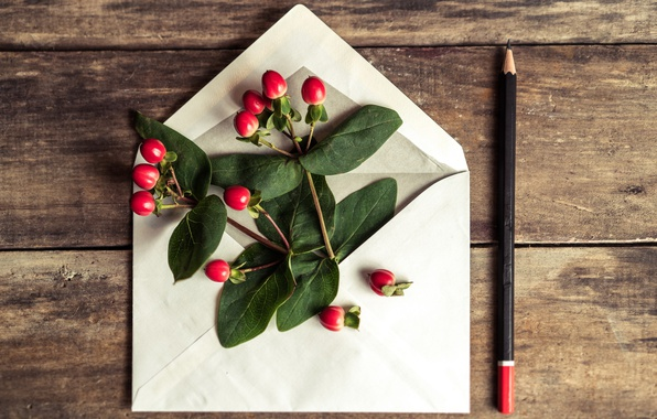 Picture flowers, pencil, love, romantic, the envelope, gift, letter