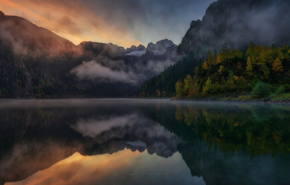 Picture forest, mountains, nature, fog, lake