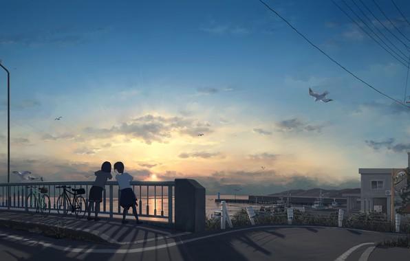 Picture bike, wire, seagulls, post, horizon, lantern, town, friend, on the bridge, two girls, sunset on …