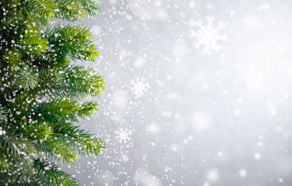 Picture winter, snow, snowflakes, tree, New Year, Christmas, Christmas, winter, snow, Xmas