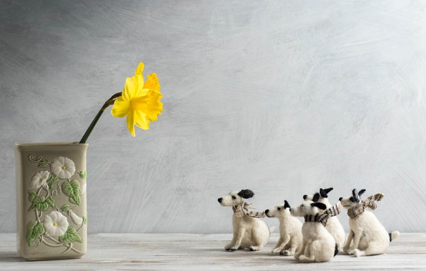 Picture dogs, toys, vase, Narcissus