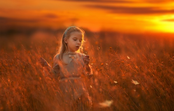 Picture sunset, meadow, girl