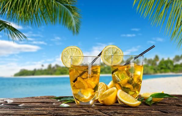 Picture ice, sea, summer, palm trees, lemon, lemonade