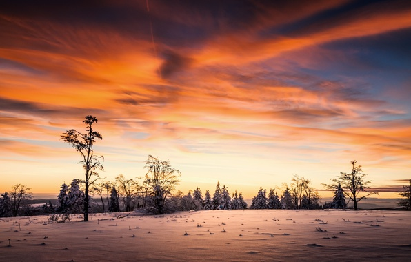 Picture winter, the sky, sunset