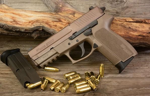 Picture gun, weapons, gun, pistol, weapon, Sig Sauer, SIG Sauer, P2022, Sig P2022, П2022