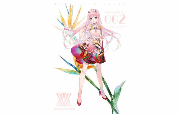 Wallpaper Girl, White Background, Anime, Art, Darling In