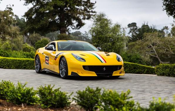 Picture Ferrari, F12, TDF