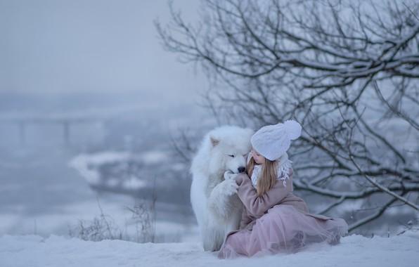 Picture winter, snow, joy, dog, girl, Samoyed