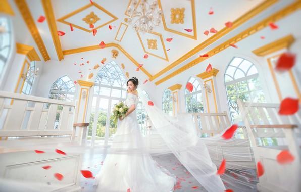Picture Girl, petals, Dress, The bride, Phot's